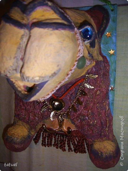 Всем привет! Этот верблюжонок из работ-долгостороев.  Считала, что он получился недостаточно похожим, да и первоначальный цвет  не радовал. Пришлось за него взяться, переделать форму глаз, цвет морды, добавить сбрую.  Сейчас он стал намного симпатичнее. фото 5