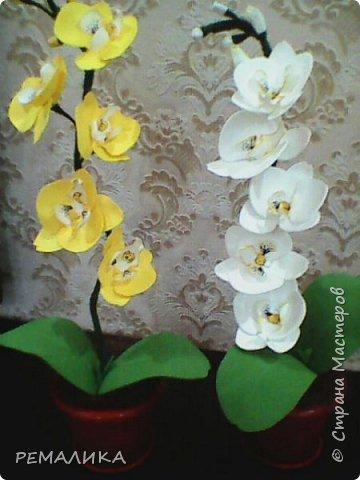 На день рождения коллегам.По этому МК http://stranamasterov.ru/node/999820?c=favorite За что огромное спасибо автору. фото 1