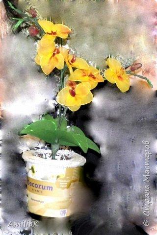 Мой первый цветок из капрона. Извините за качество фото ,забыла сделать фото и подарила