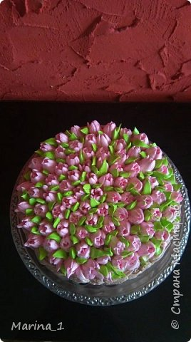 шоколадный бисквит,сливочно йогуртовый крем,прослойка с персиков. фото 1