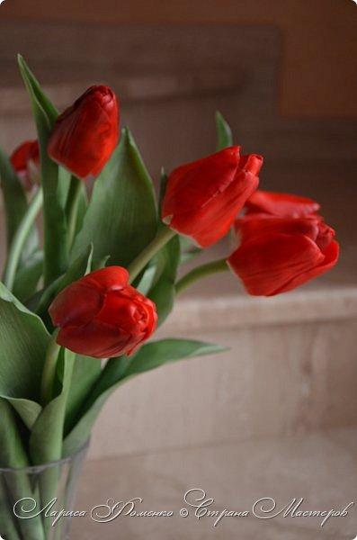 Мои эксперименты с красным продолжаются! На этот раз выбор пал на тюльпаны. Решила делать их не распустившиеся, но в бутоне мне показалось их делать сложнее чем в роспуске, хоть и минуя этап пестиков и тычинок. фото 3