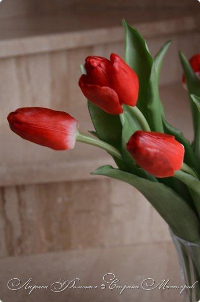 Мои эксперименты с красным продолжаются! На этот раз выбор пал на тюльпаны. Решила делать их не распустившиеся, но в бутоне мне показалось их делать сложнее чем в роспуске, хоть и минуя этап пестиков и тычинок. фото 4