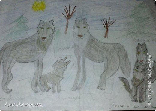 Вот такой рисунок у меня получился, здесь волк со своей семьёй вышел на прогулку.У волка есть: волчица и 3-е волчат 2-ва сына и 1-на дочка.