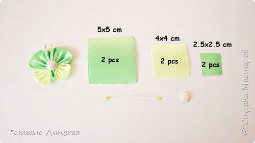 Всем привет! Я снова к вам с бабочками. На этот раз бабочки маленькие. Они просты в исполнении и смогут дополнить любые цветочные композиции, также их можно использовать для маленьких заколочек и резиночек.    Мой канал на Youtube https://www.youtube.com/channel/UCIedyb0P1_g831_GlrXeW7g фото 3