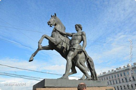 В школе учительница детям дала задание, походить по городу и пофотографировать коней. Нам это очень понравилось, с удовольствием погуляли и посмотрели. Вон их оказывается сколько!  Эти лошадки расположены на здании Александрийского театра. фото 10