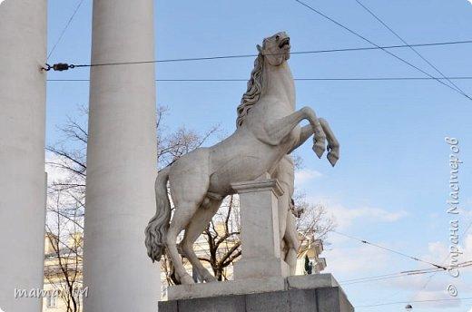 В школе учительница детям дала задание, походить по городу и пофотографировать коней. Нам это очень понравилось, с удовольствием погуляли и посмотрели. Вон их оказывается сколько!  Эти лошадки расположены на здании Александрийского театра. фото 15