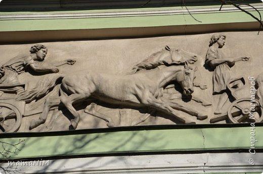 В школе учительница детям дала задание, походить по городу и пофотографировать коней. Нам это очень понравилось, с удовольствием погуляли и посмотрели. Вон их оказывается сколько!  Эти лошадки расположены на здании Александрийского театра. фото 22