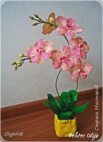 Всем здравствуйте! В этом году решила своих близких поздравить рукодельными подарочками. Очень боялась не успеть сделать все орхидеи  к 8 марта, но удача мне сопутствовала)))) Итак, на ваше внимание выношу свои работы! фото 2