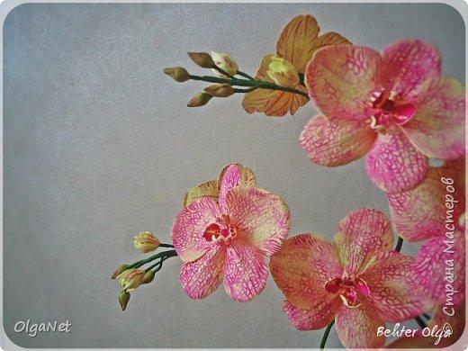 Всем здравствуйте! В этом году решила своих близких поздравить рукодельными подарочками. Очень боялась не успеть сделать все орхидеи  к 8 марта, но удача мне сопутствовала)))) Итак, на ваше внимание выношу свои работы! фото 1