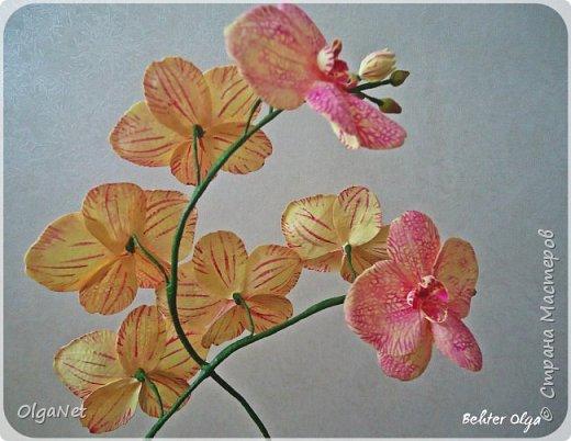 Всем здравствуйте! В этом году решила своих близких поздравить рукодельными подарочками. Очень боялась не успеть сделать все орхидеи  к 8 марта, но удача мне сопутствовала)))) Итак, на ваше внимание выношу свои работы! фото 3