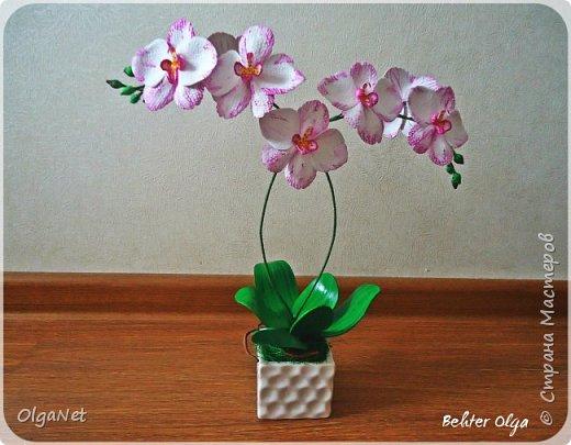 Всем здравствуйте! В этом году решила своих близких поздравить рукодельными подарочками. Очень боялась не успеть сделать все орхидеи  к 8 марта, но удача мне сопутствовала)))) Итак, на ваше внимание выношу свои работы! фото 5