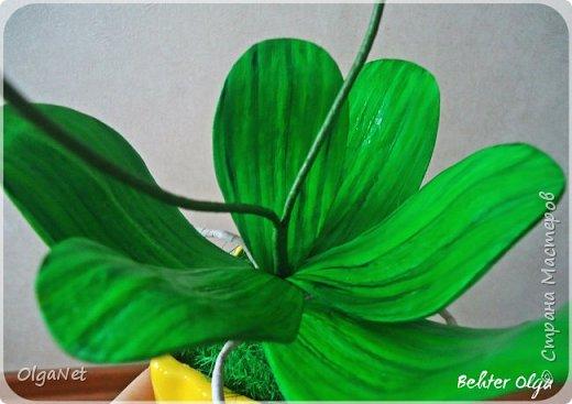 Всем здравствуйте! В этом году решила своих близких поздравить рукодельными подарочками. Очень боялась не успеть сделать все орхидеи  к 8 марта, но удача мне сопутствовала)))) Итак, на ваше внимание выношу свои работы! фото 7