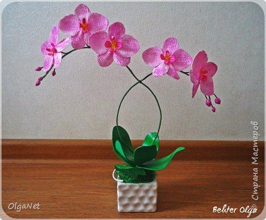 Всем здравствуйте! В этом году решила своих близких поздравить рукодельными подарочками. Очень боялась не успеть сделать все орхидеи  к 8 марта, но удача мне сопутствовала)))) Итак, на ваше внимание выношу свои работы! фото 8