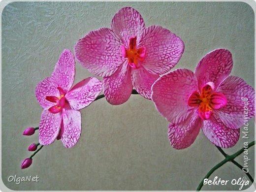 Всем здравствуйте! В этом году решила своих близких поздравить рукодельными подарочками. Очень боялась не успеть сделать все орхидеи  к 8 марта, но удача мне сопутствовала)))) Итак, на ваше внимание выношу свои работы! фото 9