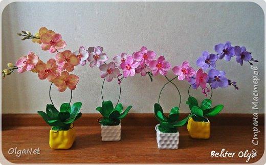 Всем здравствуйте! В этом году решила своих близких поздравить рукодельными подарочками. Очень боялась не успеть сделать все орхидеи  к 8 марта, но удача мне сопутствовала)))) Итак, на ваше внимание выношу свои работы! фото 4