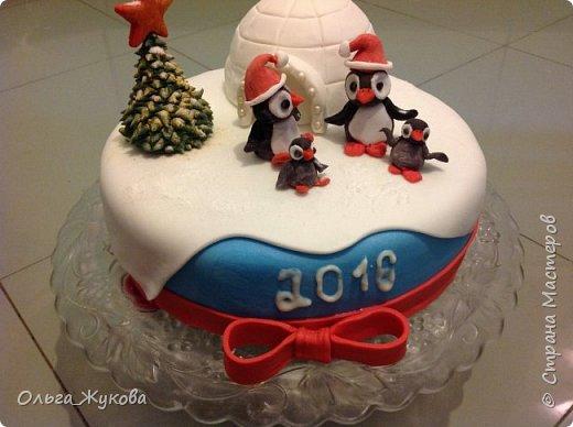 """Доброго времени суток всем! Хочу показать тортики, можно сказать, детские, которые пекла своей семье!  Первый торт- """"Пингвины на льдине"""" на Новый год. Почему то большее впечатление на моих произвёл ледяной домик и не сами пингвины, в их шапки!! фото 2"""