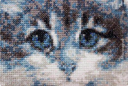 Определяем размер будущей вышивке по номеру канвы фото 1