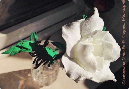 Доброго времени суток))) Затеяла я тут сделать цветочек размером по-больше моих малышей)) Сначала у меня не получалось.. а вчера, пока сидели с мужем разговоры разговаривали, вот, что вышло)) фото 3