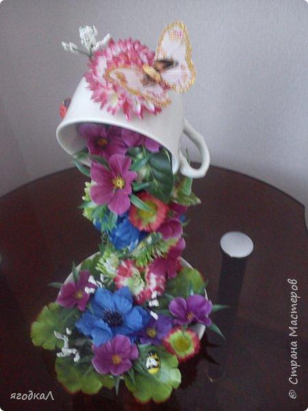 Топиарий, чаша изобилия, корзинка из шишек. фото 4
