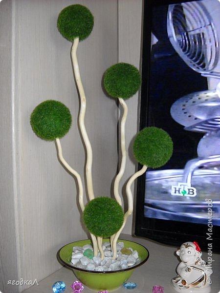 Топиарий, чаша изобилия, корзинка из шишек. фото 2