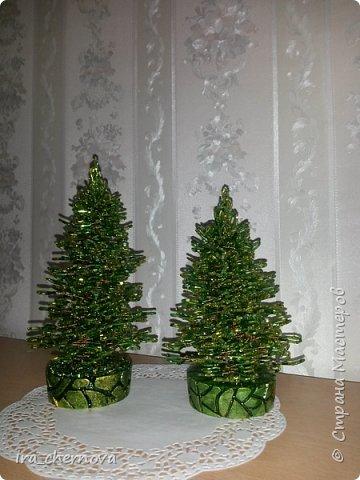 Мои новые деревья. фото 7