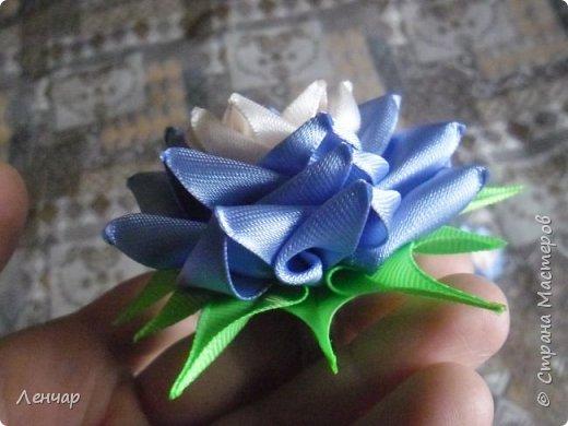 Всем добрый день. Может быть кому-то пригодится... Показываю, какие розы получаются, если делать их из разной ленты.  Эта из ленты шириной  5,5 см.  Получается большая, красивая. Здесь она на зажиме  11,5 см  и его почти не видно, так что размер можно представить.  По высоте цветок тоже получается сантиметров 4-5. Так что если делать такую на ножке, то ножка должна быть см 40, а то и больше... Не знаю, как кому, а мне коротконогие розы не нравятся... фото 16
