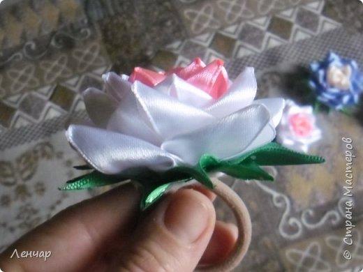 Всем добрый день. Может быть кому-то пригодится... Показываю, какие розы получаются, если делать их из разной ленты.  Эта из ленты шириной  5,5 см.  Получается большая, красивая. Здесь она на зажиме  11,5 см  и его почти не видно, так что размер можно представить.  По высоте цветок тоже получается сантиметров 4-5. Так что если делать такую на ножке, то ножка должна быть см 40, а то и больше... Не знаю, как кому, а мне коротконогие розы не нравятся... фото 17
