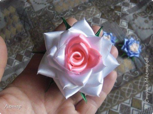 Всем добрый день. Может быть кому-то пригодится... Показываю, какие розы получаются, если делать их из разной ленты.  Эта из ленты шириной  5,5 см.  Получается большая, красивая. Здесь она на зажиме  11,5 см  и его почти не видно, так что размер можно представить.  По высоте цветок тоже получается сантиметров 4-5. Так что если делать такую на ножке, то ножка должна быть см 40, а то и больше... Не знаю, как кому, а мне коротконогие розы не нравятся... фото 7