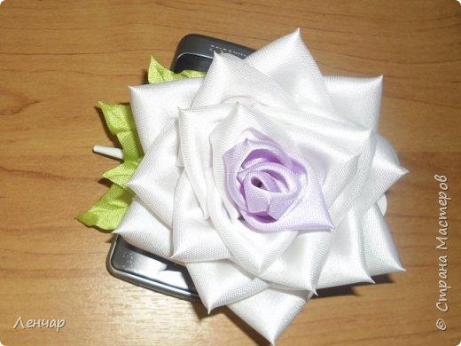 Всем добрый день. Может быть кому-то пригодится... Показываю, какие розы получаются, если делать их из разной ленты.  Эта из ленты шириной  5,5 см.  Получается большая, красивая. Здесь она на зажиме  11,5 см  и его почти не видно, так что размер можно представить.  По высоте цветок тоже получается сантиметров 4-5. Так что если делать такую на ножке, то ножка должна быть см 40, а то и больше... Не знаю, как кому, а мне коротконогие розы не нравятся... фото 1
