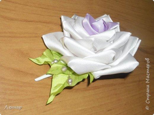 Всем добрый день. Может быть кому-то пригодится... Показываю, какие розы получаются, если делать их из разной ленты.  Эта из ленты шириной  5,5 см.  Получается большая, красивая. Здесь она на зажиме  11,5 см  и его почти не видно, так что размер можно представить.  По высоте цветок тоже получается сантиметров 4-5. Так что если делать такую на ножке, то ножка должна быть см 40, а то и больше... Не знаю, как кому, а мне коротконогие розы не нравятся... фото 2