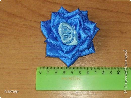 Всем добрый день. Может быть кому-то пригодится... Показываю, какие розы получаются, если делать их из разной ленты.  Эта из ленты шириной  5,5 см.  Получается большая, красивая. Здесь она на зажиме  11,5 см  и его почти не видно, так что размер можно представить.  По высоте цветок тоже получается сантиметров 4-5. Так что если делать такую на ножке, то ножка должна быть см 40, а то и больше... Не знаю, как кому, а мне коротконогие розы не нравятся... фото 4