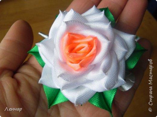 Всем добрый день. Может быть кому-то пригодится... Показываю, какие розы получаются, если делать их из разной ленты.  Эта из ленты шириной  5,5 см.  Получается большая, красивая. Здесь она на зажиме  11,5 см  и его почти не видно, так что размер можно представить.  По высоте цветок тоже получается сантиметров 4-5. Так что если делать такую на ножке, то ножка должна быть см 40, а то и больше... Не знаю, как кому, а мне коротконогие розы не нравятся... фото 8