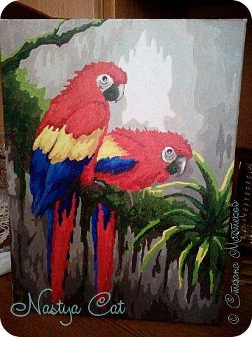 """Всем добра! Сегодня я сдаю работу на конкурс """" В мире птиц"""". Я нарисовала попугайчиков в тропическом лесу. Работа выполнена на холсте акриловыми красками"""