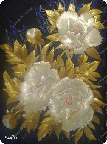 Когда цветут пионы фото 1