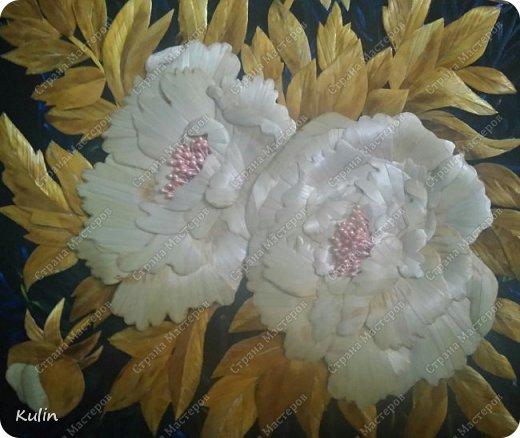 Когда цветут пионы фото 3