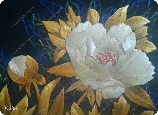 Когда цветут пионы фото 2