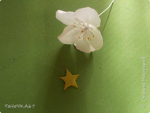 Доброго времени суток Всем! Решила сделать мк яблоньки  из зефирки упрощённый,то есть когда надо очень быстро)))) фото 12