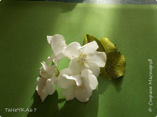 Доброго времени суток Всем! Решила сделать мк яблоньки  из зефирки упрощённый,то есть когда надо очень быстро)))) фото 14