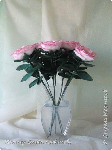 Подарок для подруги. Людмила любит нежно-розовые розы. Признаюсь, думала, что не успею, но все сложилось. фото 2