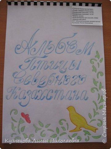 Работа, выполненная на конкурс Шамураткиной Ангелиной, 4 класс фото 1