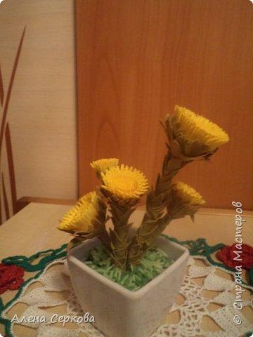 Весенние первоцветы из фоамирана