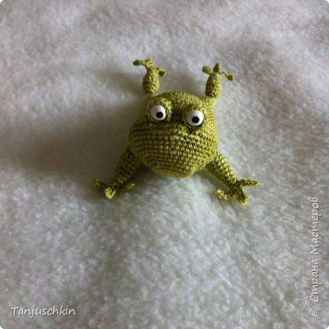 Добрый день,всем! Сегодня, я снова с повязушками.Всё вязалось в подарок для Наташи  http://stranamasterov.ru/user/272574. Маленький лягушонок связан по мк Ольги Цепелевой. фото 1