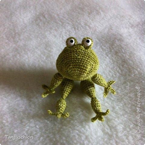 Добрый день,всем! Сегодня, я снова с повязушками.Всё вязалось в подарок для Наташи  http://stranamasterov.ru/user/272574. Маленький лягушонок связан по мк Ольги Цепелевой. фото 2