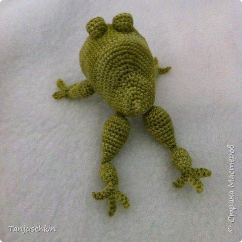 Добрый день,всем! Сегодня, я снова с повязушками.Всё вязалось в подарок для Наташи  http://stranamasterov.ru/user/272574. Маленький лягушонок связан по мк Ольги Цепелевой. фото 3