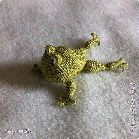 Добрый день,всем! Сегодня, я снова с повязушками.Всё вязалось в подарок для Наташи  http://stranamasterov.ru/user/272574. Маленький лягушонок связан по мк Ольги Цепелевой. фото 4