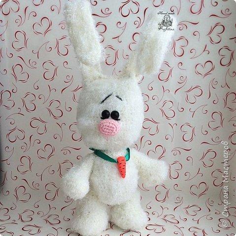 Заяца фото 2