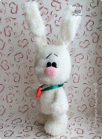 Заяца фото 3