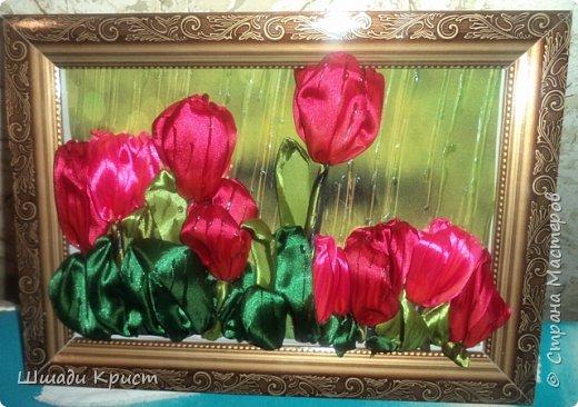 тюльпаны под дождем фото 1