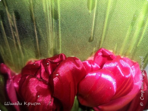 тюльпаны под дождем фото 2