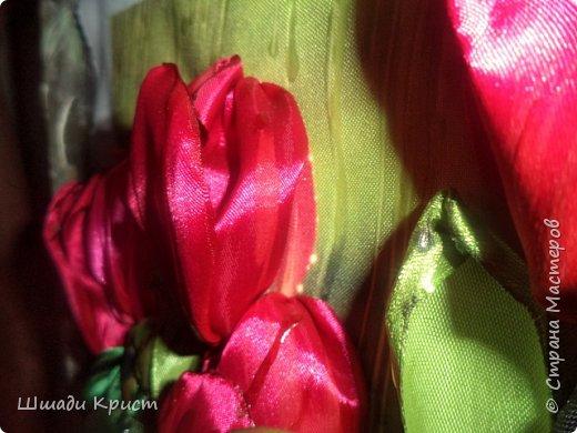 тюльпаны под дождем фото 3